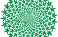 'Stoner' is so last century: Marketing marijuana will be about the buzz